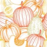 Pumpkin seamless pattern Stock Photos