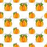 Pumpkin seamless pattern vector background Royalty Free Stock Photo