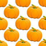 Pumpkin seamless pattern on white. vector Royalty Free Stock Photos