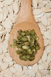 Pumpkin seed Stock Photo