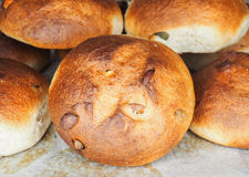 Pumpkin seed buns on baking paper after baking. At close-up royalty free stock photo