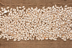 Pumpkin seed  lying on sackcloth between the lines Stock Photo