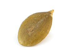 Pumpkin seed macro Stock Image