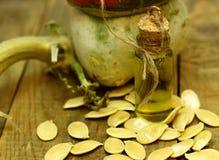 Pumpkin seed oil Organic food farmer concept. Royalty Free Stock Photo