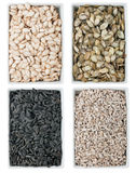 Pumpkin seed, sunflower seed  in a of ceramic plate Stock Photography