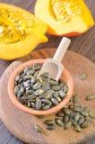 Pumpkin seed Stock Image