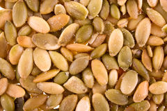 Pumpkin seeds. Roasted and salted pumpkin seeds background Stock Images