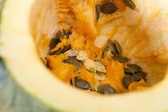 Pumpkin seeds Stock Photos