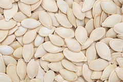 Pumpkin seeds. Stock Photos