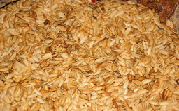 Pumpkin seeds background Royalty Free Stock Photography