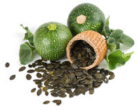 Pumpkin Seeds in a basket  and plant Stock Photography