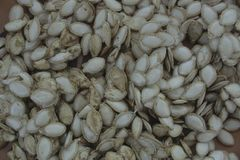 Pumpkin seeds closeup a lot royalty free stock photos