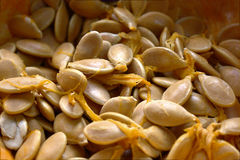 The pumpkin seeds Royalty Free Stock Photo