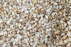 Pumpkin seeds for cooking Stock Photography