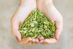 Pumpkin Seeds In The Hands Heart Shape Royalty Free Stock Photography