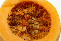 Pumpkin seeds inside her. Pumpkin seeds inside her close-up Royalty Free Stock Photo