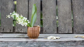 Pumpkin seeds and lily of the valley flower in a ceramic small mug Royalty Free Stock Photos