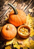 Pumpkin seeds with the maple leaves. Stock Image
