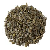 Pumpkin Seeds Peeled Stock Photos