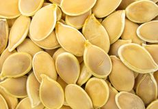 Pumpkin seeds pepitas Royalty Free Stock Photo