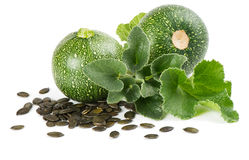 Pumpkin Seeds and plant Stock Images