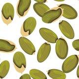 Pumpkin Seeds Seamless Pattern Stock Image