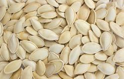Pumpkin seeds snack Stock Image