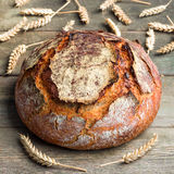 Pumpkin seeds sourdough country bread. On a wooden table royalty free stock images
