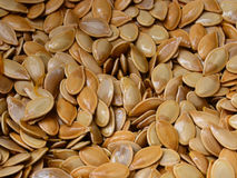 Pumpkin seeds. Washed pumpkin seeds waiting to be roasted Stock Photography