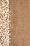 Pumpkin seeds were lying on sackcloth Royalty Free Stock Photos