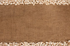 Pumpkin seeds were lying on sackcloth Royalty Free Stock Images