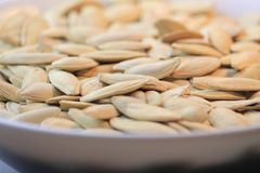 Pumpkin seeds on the plate. Pumpkin seeds on the white plate Royalty Free Stock Images