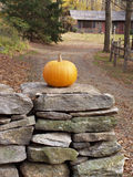 Pumpkin Sentinel. Pumpkin on stone wall in front of rural home Stock Images
