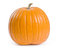 Pumpkin Series Royalty Free Stock Image