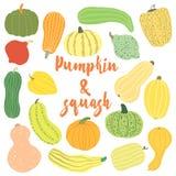 Pumpkin set. Hand-drawn cartoon squash Stock Images