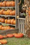 The Pumpkin Shack Royalty Free Stock Photos