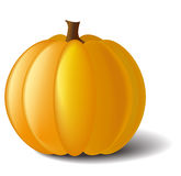 Pumpkin with a shadow Stock Photos