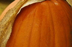Pumpkin side Stock Photos