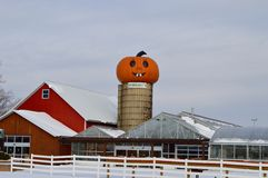 Pumpkin Silo Royalty Free Stock Image