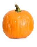 Pumpkin: Single Pumpkin on White Stock Photos