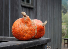 Pumpkin sitting on wood railing Royalty Free Stock Photo