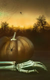 Pumpkin with skeleton hand and spider webs Stock Images