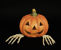 Pumpkin with Skeleton Hands Stock Photo