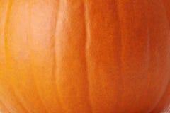 Pumpkin skin texture Stock Image