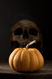 Pumpkin and skull Stock Images