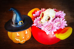 Pumpkin and skull in halloween concept on panel wooden backgroun Royalty Free Stock Photo