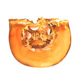 Pumpkin slice isolated on white background Stock Photo