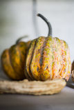 Pumpkin. Small pumpkin and other fruits Royalty Free Stock Photo