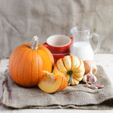 Pumpkin soup ingredients (pumpkins, garlic, onion) on a sack Royalty Free Stock Photography