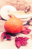 Pumpkin soup set vintage Stock Images